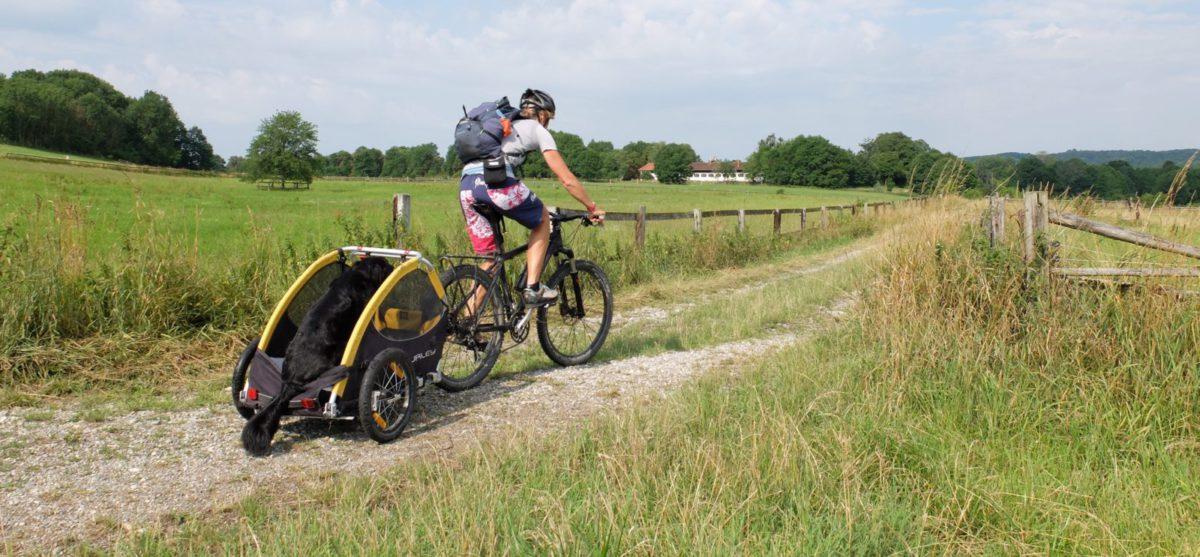 Test: Burley Tail Wagon
